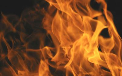 Kur mungojnë drutë, zjarri shuhet…